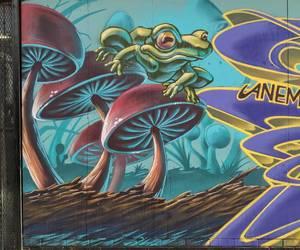 frog, graffiti, and mushrooms image