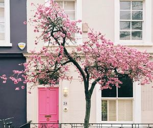 architecture, house, and pink image