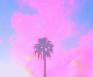 palm trees, filter, and pastel image