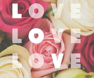 love, roses, and wallpaper image