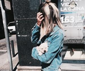 dog, fashion, and animal image