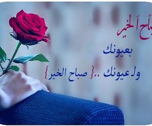 Image by Sofy Ali