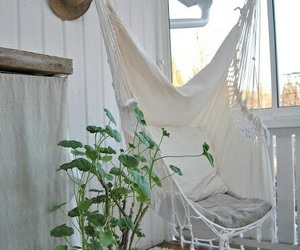 white, home, and plants image