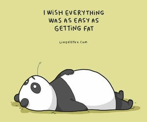 panda, funny, and quotes image