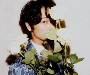 綾野剛, roses, and japanese actor image