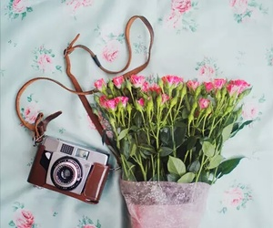 flowers, camera, and amazing image
