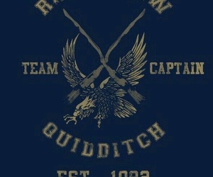 harry potter, ravenclaw, and quidditch image
