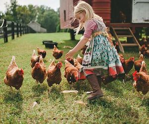 cute, Chicken, and child image