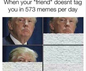 funny, lol, and meme image