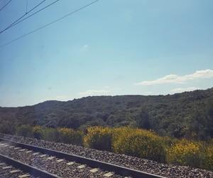 landscape, travel, and sun image