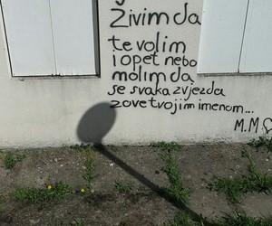 sasa kovacevic, zivim da te volim, and citati image
