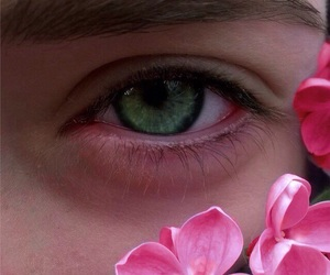 flowers, green, and eye image
