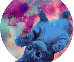 art, blue, and cat image