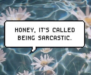 sarcastic, sarcasm, and honey image