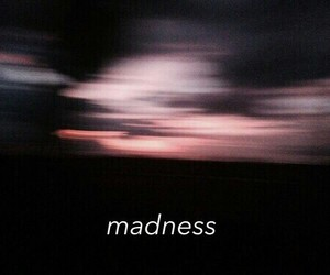 madness, grunge, and quotes image