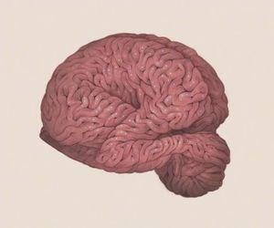 art, brain, and beauty image