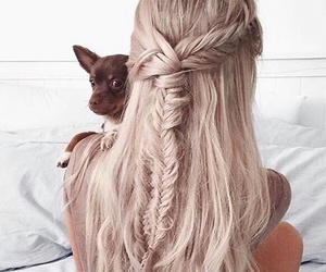 hair, dog, and girl image