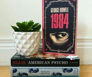 book, bookshelf, and estante image