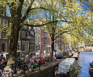 amsterdam, nature, and canaux image