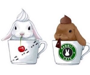 rabbit, bunny, and starbucks image