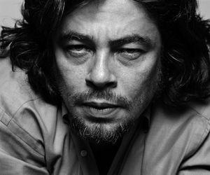 Benicio del Toro and del toro image