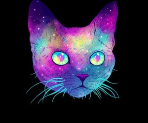 cat, wallpaper, and galaxy image