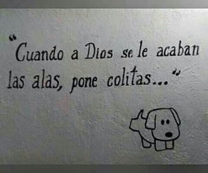 dog, frases, and pet image