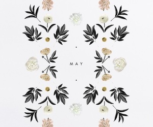 may, flowers, and vintage image