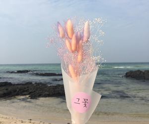 flowers and ocean image