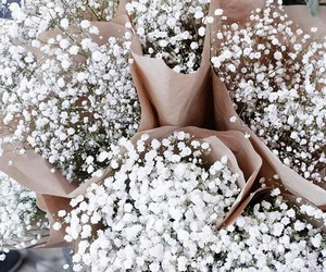 baby's breath and flowers image