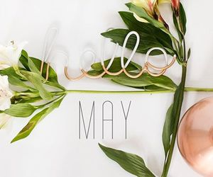 flowers, new month, and spring image
