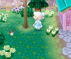 animal crossing, game, and new leaf image