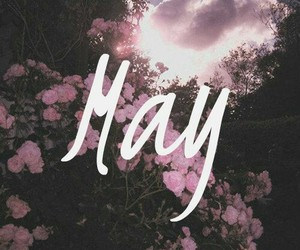 may, flowers, and quote image