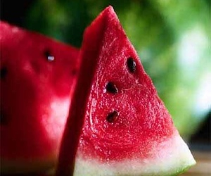 watermelon and love image