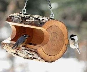 diy and bird image