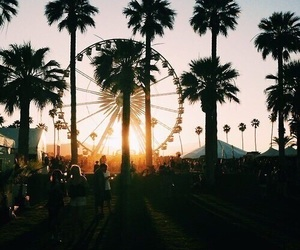 summer, coachella, and sunset image