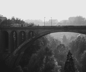 bridge, photography, and train image