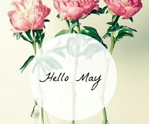 flowers, may, and spring image