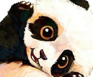 panda, wallpaper, and animal image