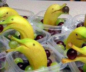 banana, dolphin, and fruit image