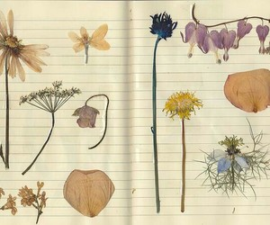 flowers and notebook image