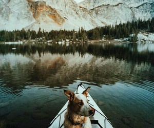 dog, mountains, and boat image