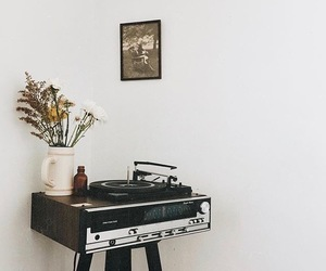 aesthetic, flowers, and vinyl image