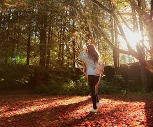 autumn, nature, and beautiful image