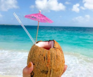 coconut, lifestyle, and summer image