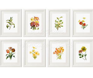botanical, wall art, and botanical print image