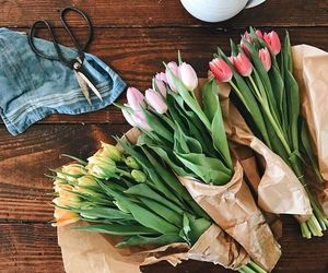 flowers, spring, and pink tulips image