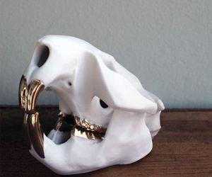 gold and skull image