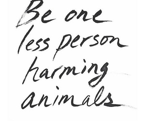 animals, inspiration, and be kind image