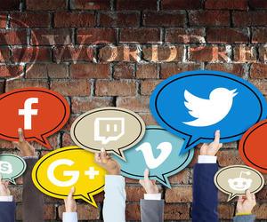 wordpress development and social media integration image